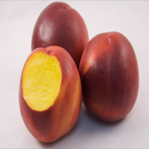 Nectarines, Yellow  (1/2 cup, size 80/84), approx 120ct) Fresno