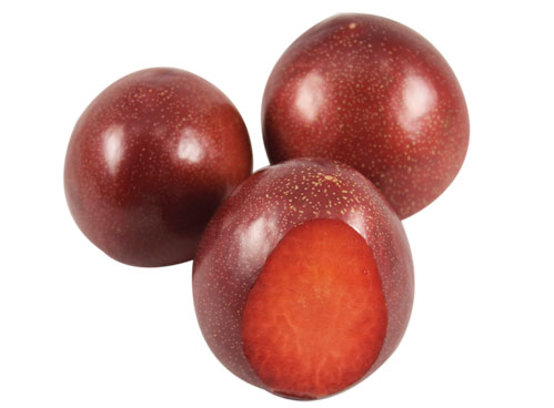 Plums, Red-50/65 DON