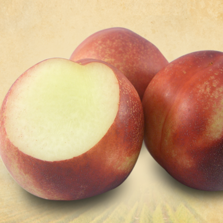 Nectarines, White (1/2 cup, 85 ct/cs) Fresno