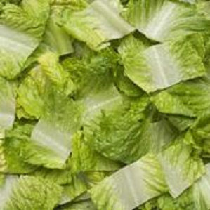 Lettuce, Romaine Chopped (6 ct/cs, 2 lb Bags, Monterey County, 12 lbs)