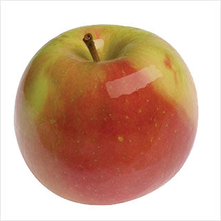 Apples, Gala/Fuji Variety (3/4 cup, 163 ct/cs)